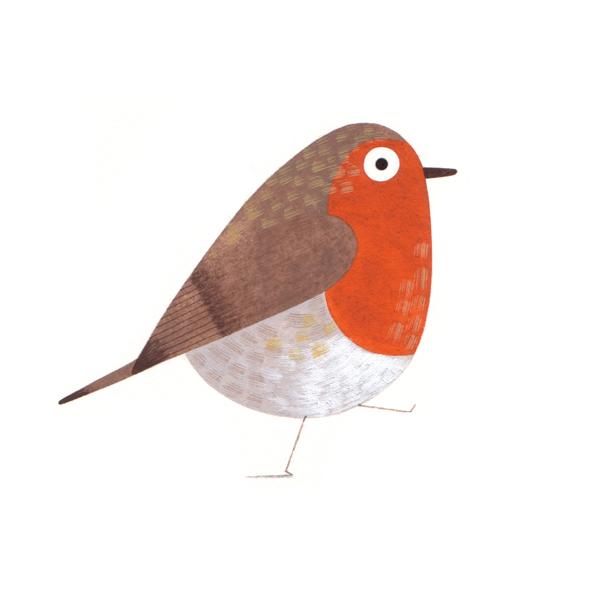 Gbird2_web